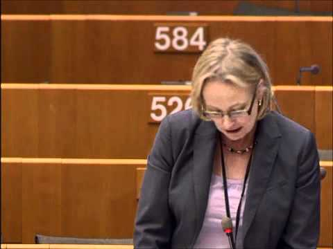 Julie Girling MEP discussing the Common Agricultural Policy