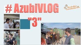 #AzubiVLOG  🙋♀️🙋♂️ 3️⃣  Timo macht Fotos,  Lena fährt Gülle, und der Mais  steht Kacke