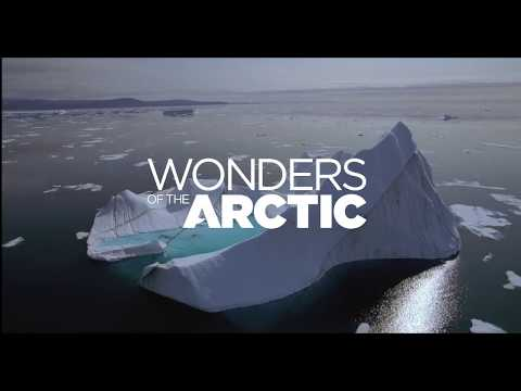 Wonders of the Arctic 3D - Screening daily from 14 December 2017
