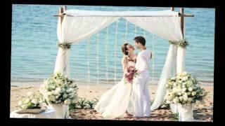 Самые лучшие свадьбы. Поздравления молодым