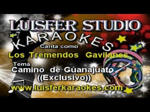 Los Tremendos Gavilanes -  Camino de Guanajuato - Karaoke demo 2016
