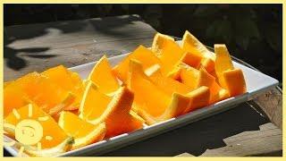 Meg | Orange Jello Slices