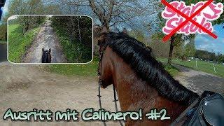 Ihr kommt mit auf einen Ausritt!♥ |Calimero| #2
