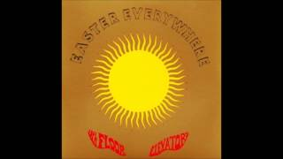 13th Floor Elevators - Nobody To Love
