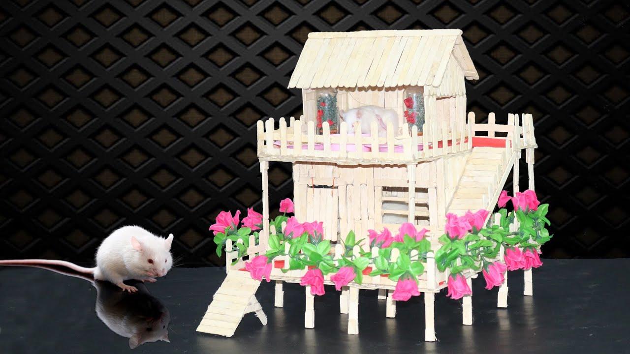 Popsicle stick house building for rat   the pet rat house ...