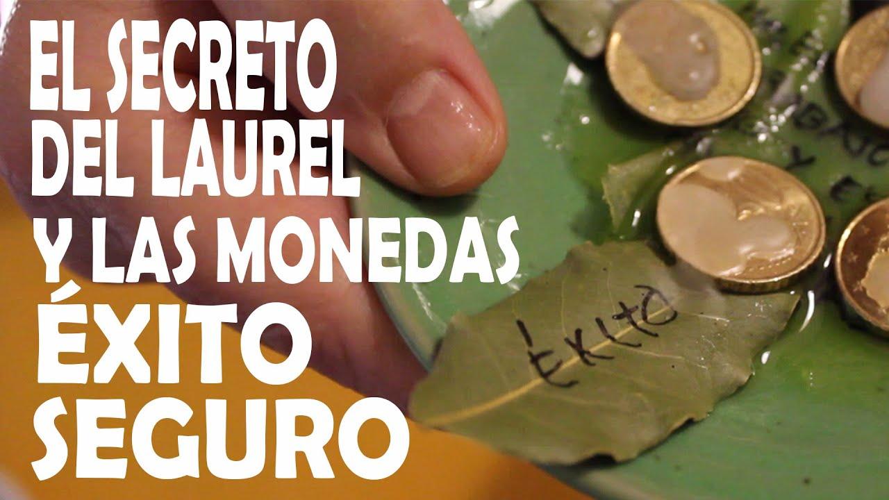 Atraer Dinero Y Abundancia Con Hoja De Laurel Y Monedas 2 Hechizos Muy Efectivos Youtube