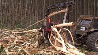 HYPRO 765 HB Processor Debarking Eucalyptus