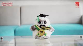 Boneka Wisuda OWL Mini 15cm + Nama