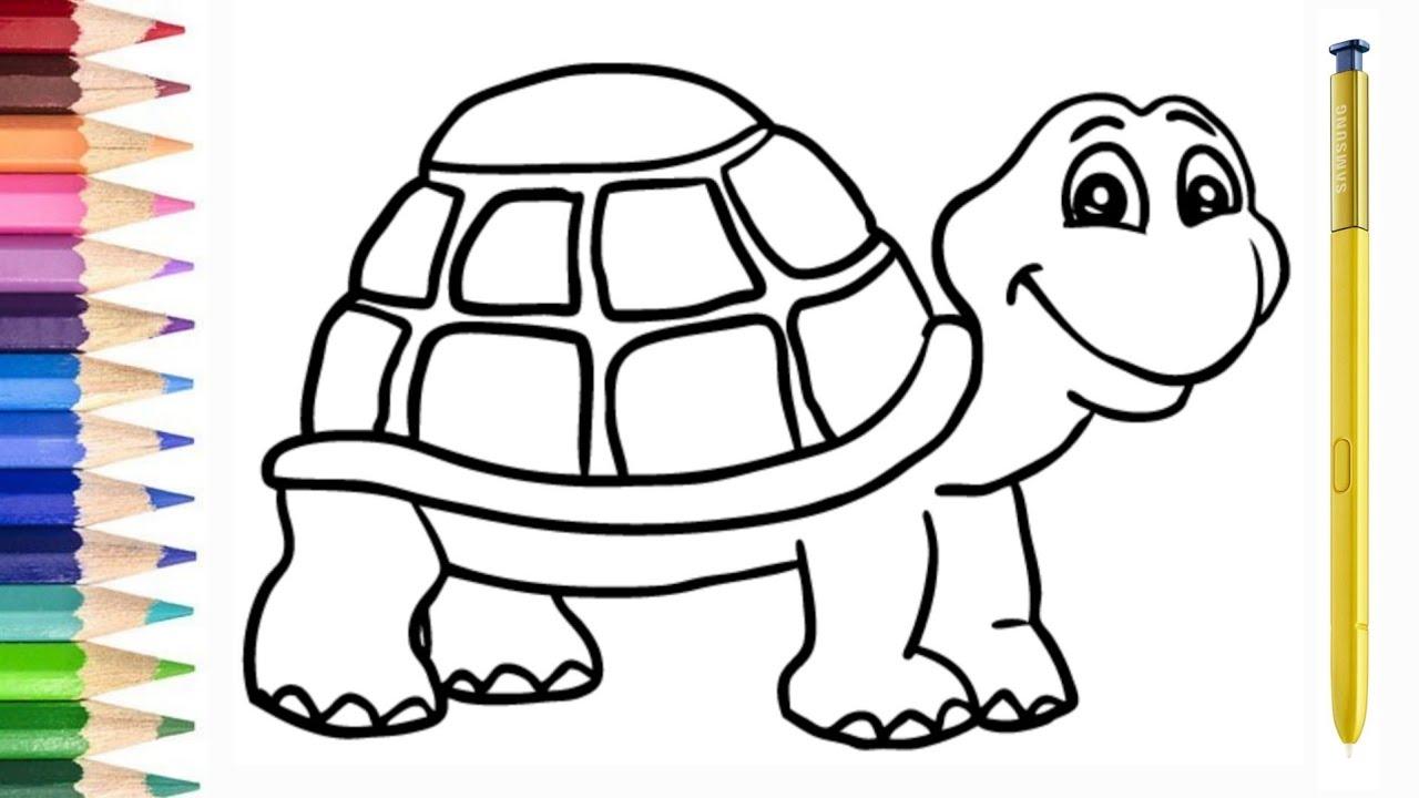 Rainbow TURTLE Kura Kura Warna Warni Belajar Menggambar Dan Mewarnai Untuk Anak