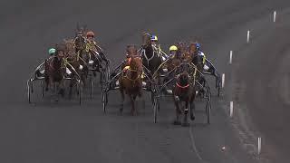 Vidéo de la course PMU LE TROT OPEN DES REGIONS - 5 ANS