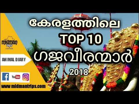 Top 10 Kerala Elephant  2018