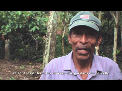ETHIQUABLE en Equateur : cacao bio et commerce équitable