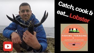 CATCH KILL COOK EAT Wild Lobster