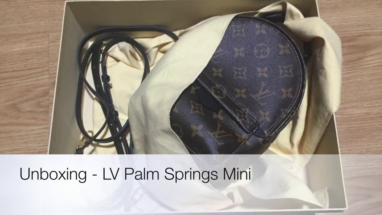 7eaf91526cc6 LOUIS VUITTON Palm Springs Mini - Unboxing (Backpack from the Cruise ...