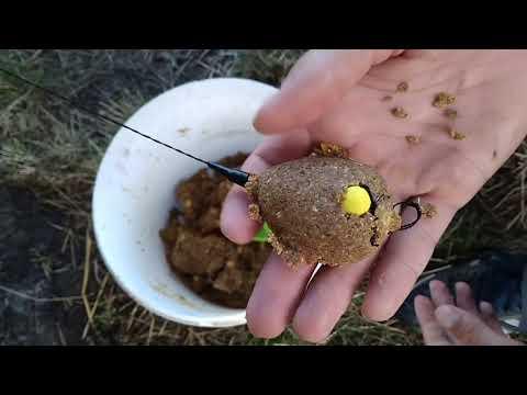 Ловля амура на pop-up и ферментированную кукурузу