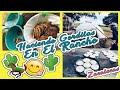 Video de Monte Escobedo