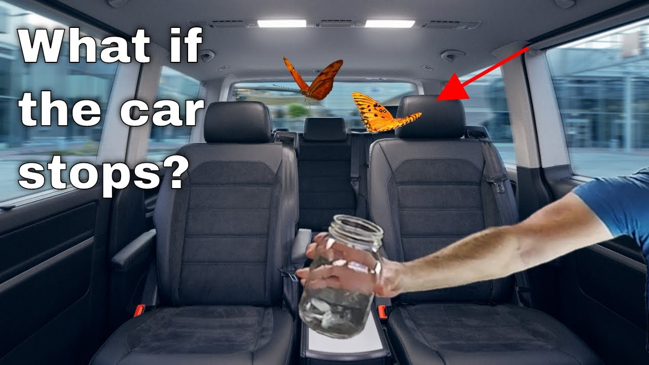 What Happens to a Bug Flying in Your Car When You Slam on Your Brakes?