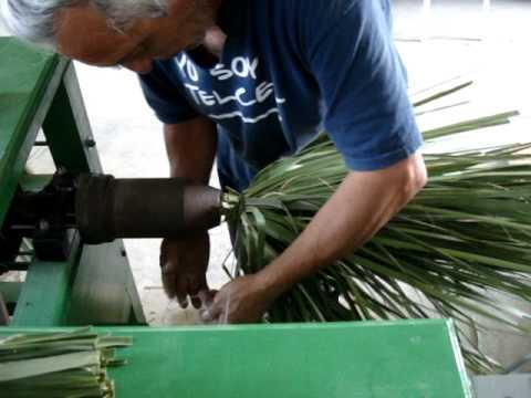 Forjando escoba de palma tipo jamaica 5 youtube - Escobas de palma ...