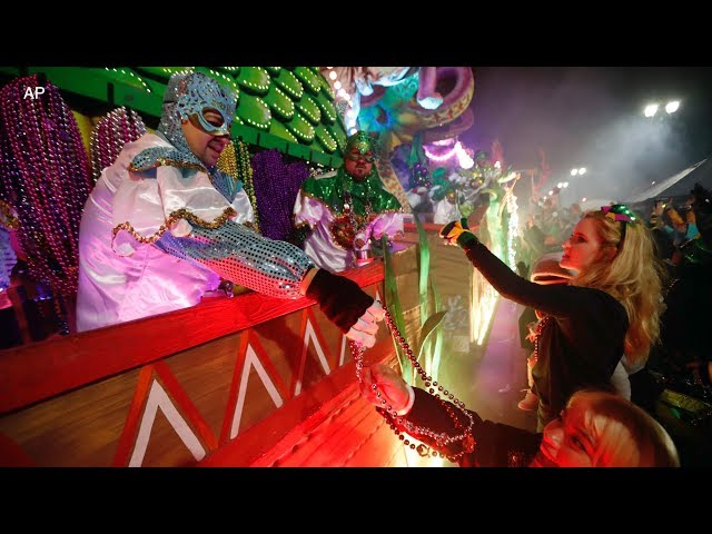 Mardi gras flashing free videos watch download