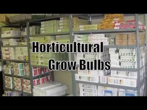 GROW LIGHTS HYDROPONICS CHARLOTTE North Carolina HTGSupply Indoor Gardening Supply
