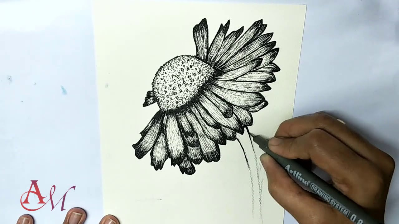 HOW TO DRAW A SIMPLE FLOWER FOR BEGINNER| DAISY FLOWER DRAWING| FLOWER SKETCH|