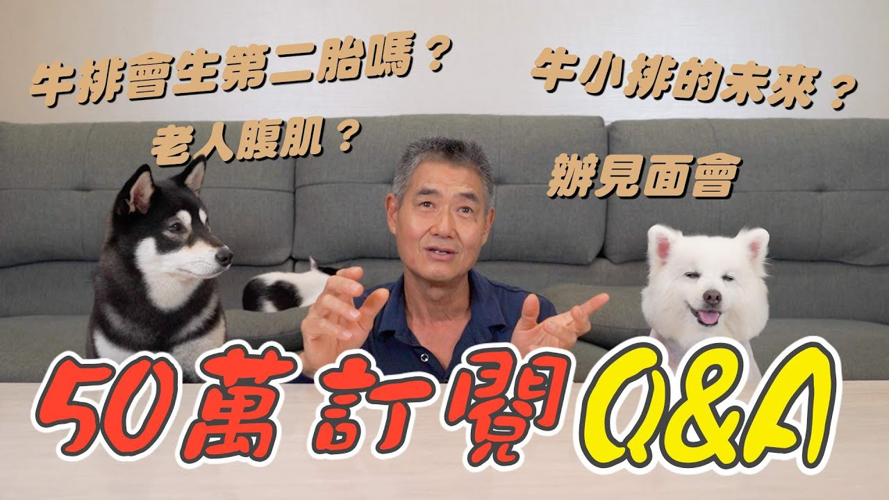 『50萬訂閱QA』牛小排的未來?牛排會不會生第二胎?即將辦見面會