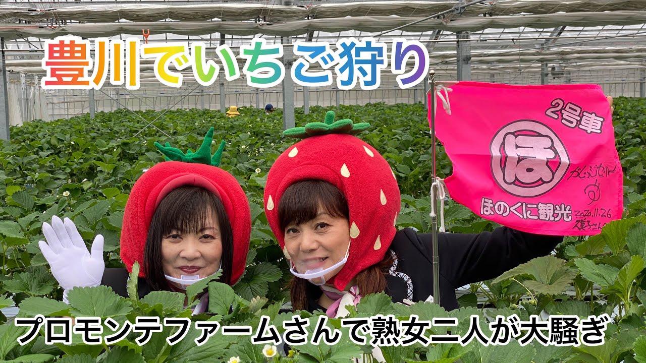豊川でいちご狩り🍓熟女ふたりで大騒ぎ