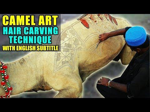 CAMEL ART | HAIR CARVING DESIGN PATTERNS | Video in URDU/HINDI