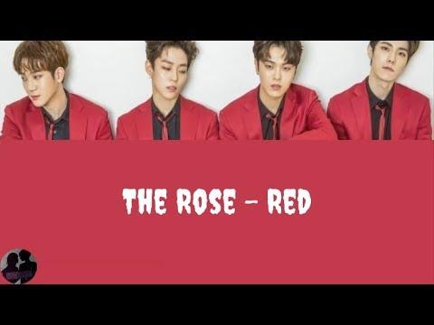 더 로즈 - RED / The Rose - RED