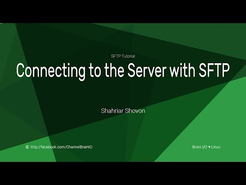 03.-connecting-to-the-server-with-sftp