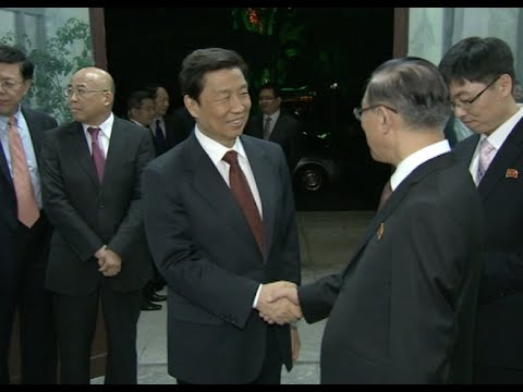 Chinese Vice President Attends Event Celebrating 70th Anniversary of WPK in Beijing