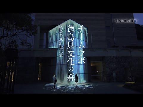 teamLab: Tokushima Bunkanomori Park / チームラボ 徳島県文化の森