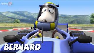 Download Bernard Bear | Motor Racing AND MORE | Cartoons for Children | Full Episodes