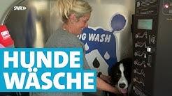 Die Hundewaschanlage in Weil am Rhein