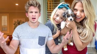 We got a new puppy!!! Prank on Cole (WE'VE NEVER SEEN HIM THIS MAD)