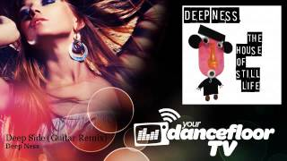 Deep Ness - Deep Side - Guitar Remix - feat. Stefano Pozzi