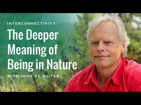 Interconnectivity: The Deeper Meaning of Being in Nature