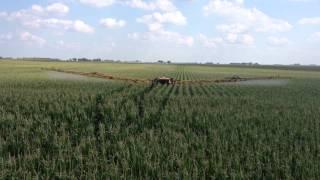 2013 Corn Fungicide - Stewart Farms
