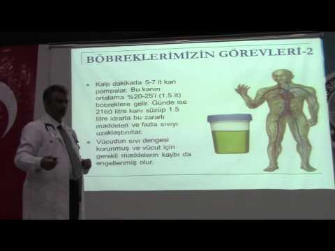 Doç.Dr.Ömer TOPRAK
