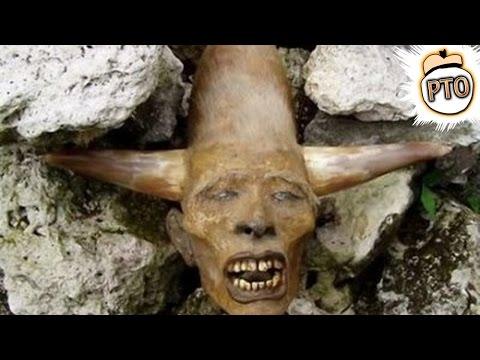 8 Weirdest Fossils Ever Discovered