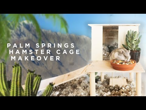 MINIMAL PALM SPRINGS HOME MAKEOVER.. (for a hamster)