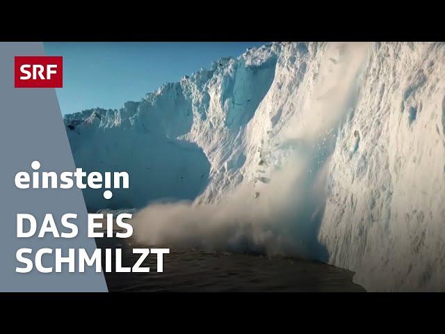 Anstieg der Meeresspiegel – wie schnell bringt der Klimawandel das Eis zum schmelzen? | SRF Einstein
