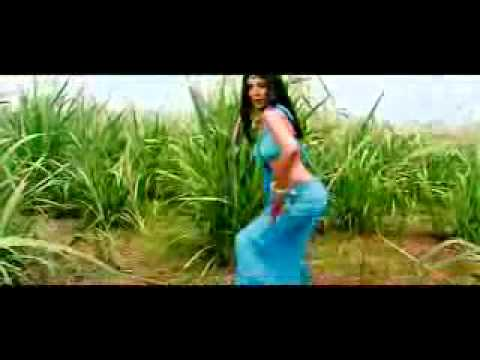 neha video song (hum tumko nigahon me.3gp)