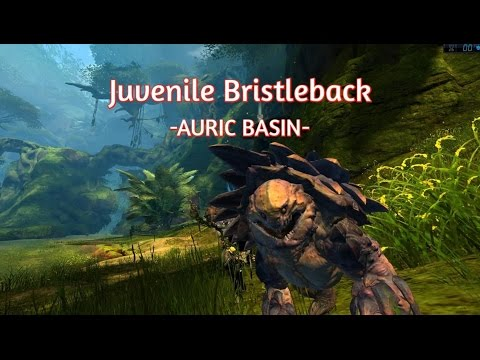 [Full-Download] Gw2 Juvenile Bristleback Ranger Pet