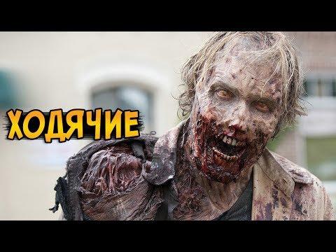 Зомби из сериала Ходячие Мертвецы (заражение, реанимация, особенности)