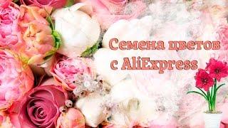 Семена цветов с Aliexpress(, 2016-05-17T19:34:57.000Z)