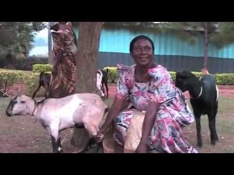 LaSWAP & The Great Generation in Uganda July 2013