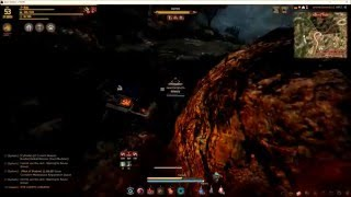 bdo tamer pvp when the hunters becomes hunted