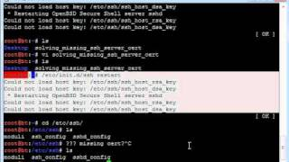 Solving missing ssh_host_dsa_key or ssh_host_rsa_key