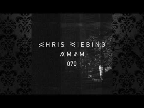 Collabs 3000 (Chris Liebing & Speedy J) - AM/FM 070 (11 July 2016) Live @ Weather Festival, Paris 4